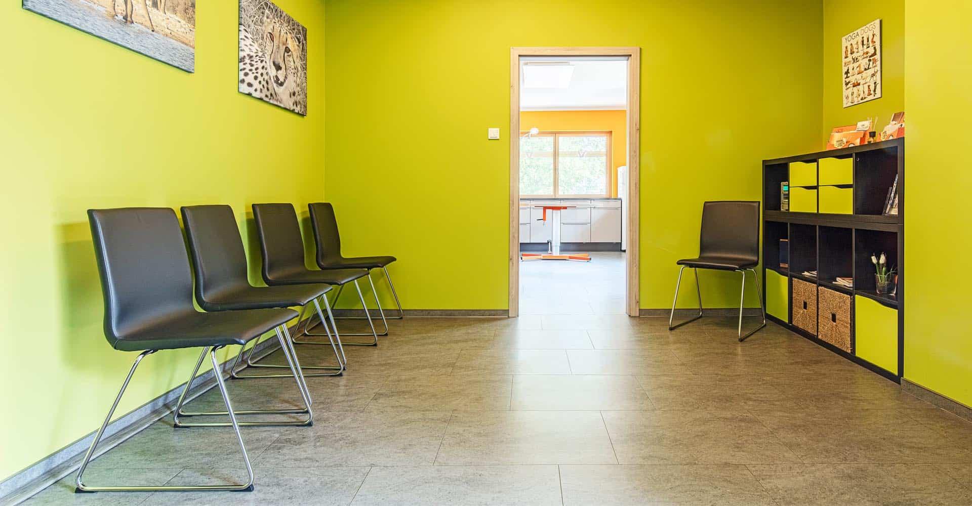 Tierarztpraxis, Innenausbau, KADUR Handwerk, Malerarbeiten, Bodenarbeiten, Fliesenarbeiten, Altfranken, Dresden, Trockenbau